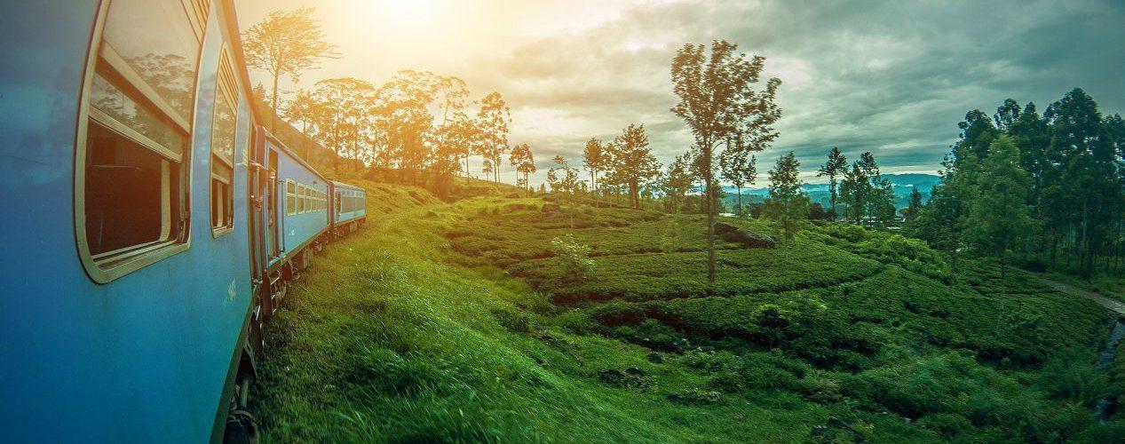 Самостоятельное путешествие по Шри Ланке